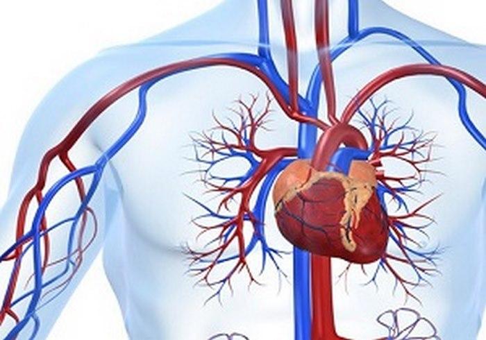 جراحی قلب و عروق