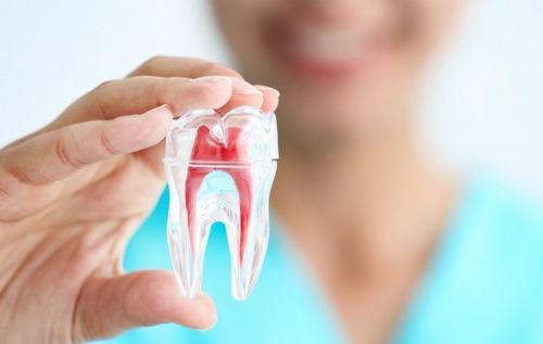 دندانپزشکی دانشگاه فردوسی مشهد