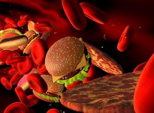 درمان سریع چربی خون در طب سنتی