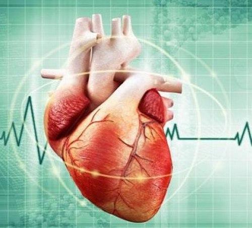 بیماری های جراحی قلب و عروق